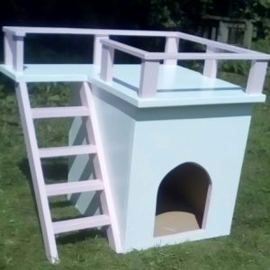 Indoor-Outdoor cat house
